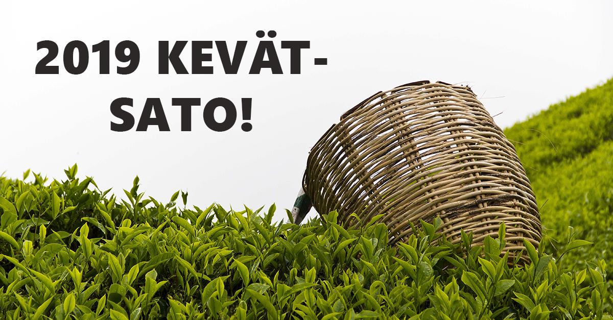 Kevään 2019 ensimmäiset uuden sadon teet ovat saapuneet! Lisää tuotteita lisätään sitä mukaan, kun niitä tulee lisää. Tilaa ja maista huipputuoretta vihreää teetä ja aromaattista First Flush Darjeeling-teetä!